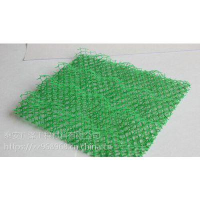 高陡边坡防护三维植被网 植草绿化多种层数山东厂家定制