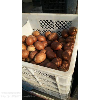 新鲜五香咸鸭蛋山东平原特产,可口咸淡合适五香鸭蛋,常年供应