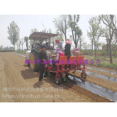 优质农作物栽苗机 成帆农业装备