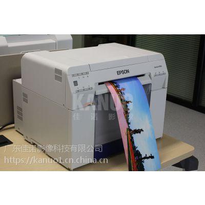 EPSON爱普生D700干式打印机喷墨打印机