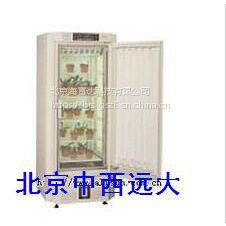 (WLY)中西植物培养箱型号:SR15-MLR-352-PC库号:M20100