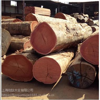 专业提供进口木板材马来菠萝格 |俄罗斯菠萝格原木木材产地