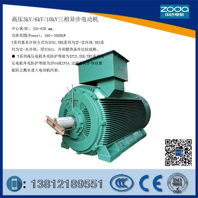 Y2铸铁紧凑型10000V高压2极电动机Y2-HV 450-6-220KW 电机ZODA