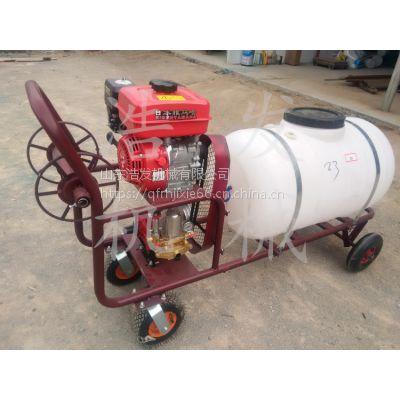 推车式农用汽油动力喷雾器300升容量