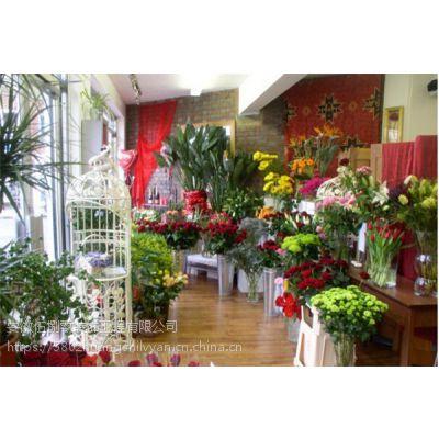合肥小型花店装修和设计的技巧 用花传递爱