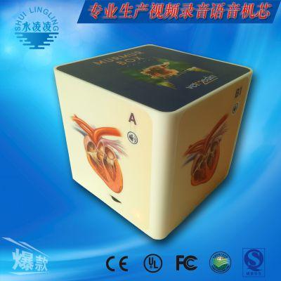 心脏音乐盒 心跳语音模块 4段语音方案 音乐盒外壳定制 模具加工