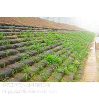 宜昌防坡护坡 防止水土流失用哪种材料?三维植被网