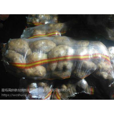 围场大库宝昌荷兰十五土豆销售155-12361144新鲜土豆销售