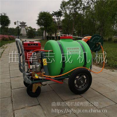热销志成160L汽油高压喷雾机小区绿化气雾杀虫机小型手推式路面清洗机