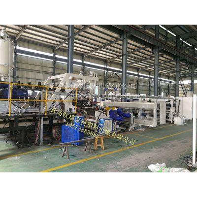 青岛欧瑞专业生产tpu流延膜生产线设备