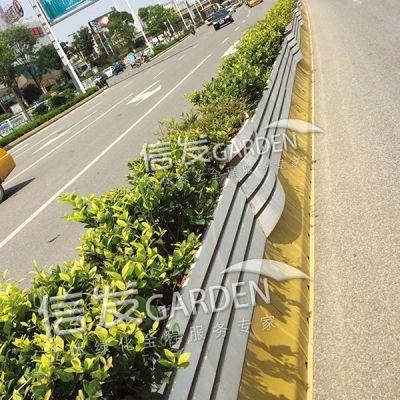 隔离带隔离栏护栏花箱 红白相间长条花箱 厂家直销