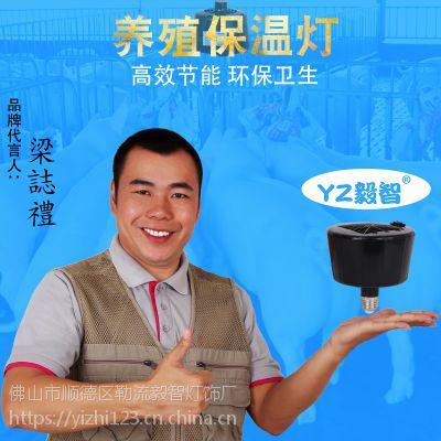 毅智仔猪保温仪器 养殖保温灯防水防爆红外线灯泡 猪取暖风机厂家批发