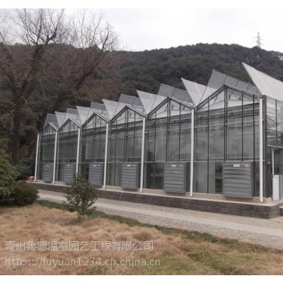 俄罗斯温室大棚厂家建设施工 玻璃温室大棚核算工程
