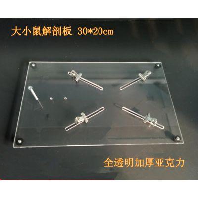 大小鼠解剖板 透明加厚亚克力 新品促销 型号:HL-JPT-2.3 现货 批发