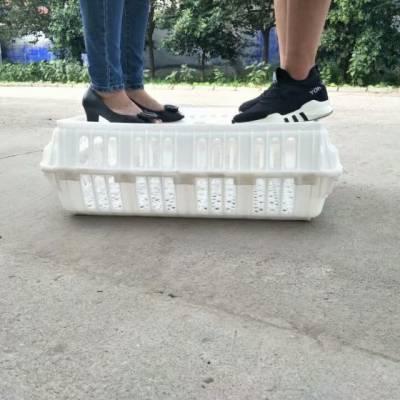 全新料白色塑料鸡笼 小鸭苗养殖周转筐 成鸡周转筐