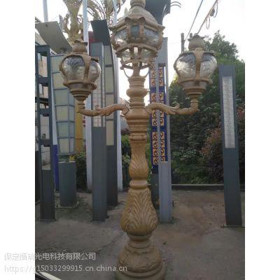 福瑞光电 FR-ld-007 太阳能景观灯 河北 LED太阳能景观灯厂家
