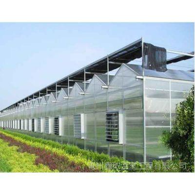 绿农阳光板温室/阳光板温室/绿农阳光板温室
