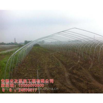 合肥大棚|安徽农友(图)|花卉大棚