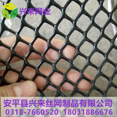工地塑料网 养鸭塑料网 鸡育雏平网规格
