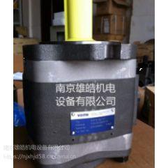IPV6-125-101福伊特齿轮泵现货销售