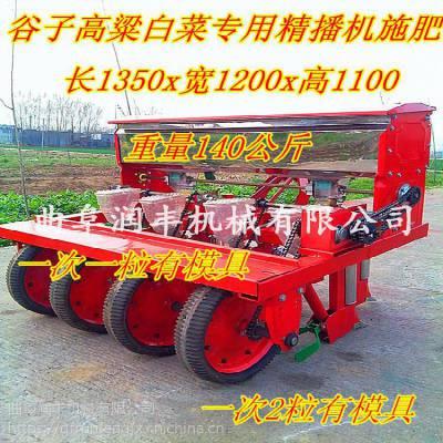 电动蔬菜播种机 大葱育苗播种机 甜菜种植机润丰工厂价销售