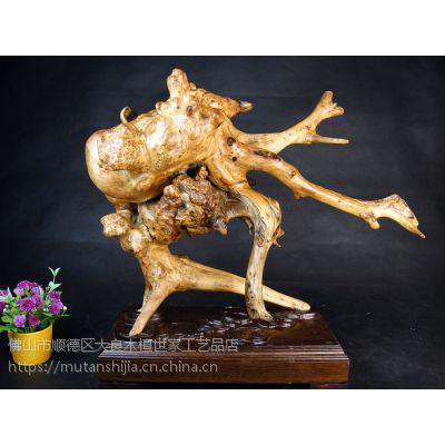 木檀世家崖柏木根雕刻 崖柏树瘤影子木 风之舞者深山神龙瘿瘤花工艺品摆件