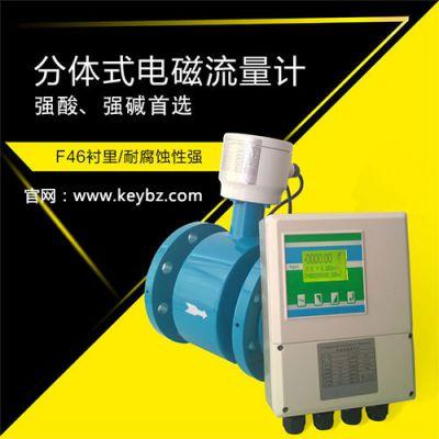 防腐污水分体式电磁流量计_上海佰质仪器