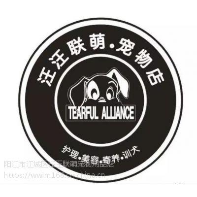 阳东宠物店—宠物寄养,狗粮,猫砂|可上门接送