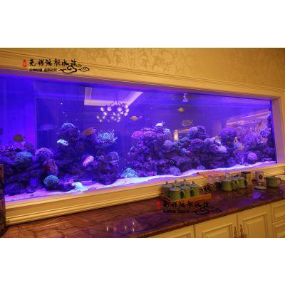 苏州大型观赏鱼缸玻璃创意水族箱行业领先