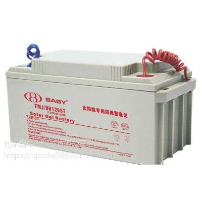 鸿贝FM/BB1265T蓄电池12V65AH零售批发网
