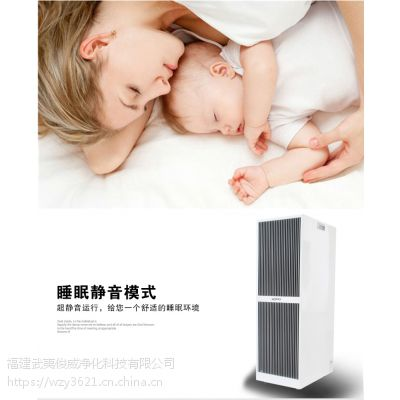 大型医用空气净化器