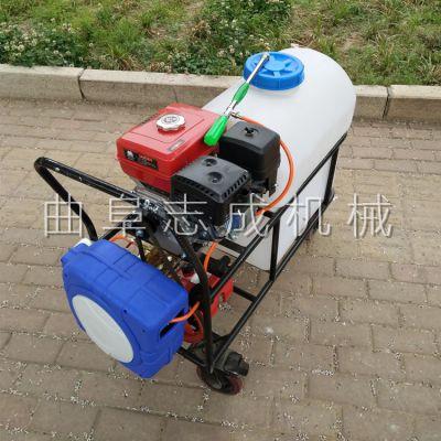 志成汽油杀虫机 低耗油手推式打药机 茶园菜园拉管式农药喷洒机