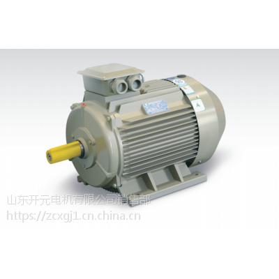 供应山东开元电机有限公司 三相异步电动机 Y290S-6-0.75KW高效节能02875
