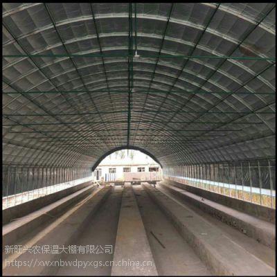 河北新旺兴农种植大棚8512大棚骨架多样化