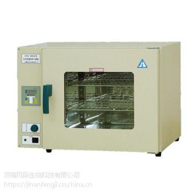精宏台式电热恒温鼓风干燥箱DHG-9123A原厂直销