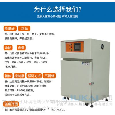瑞凯 R-PCK-200大型高温烤箱 立式工业烤箱 真空干燥箱