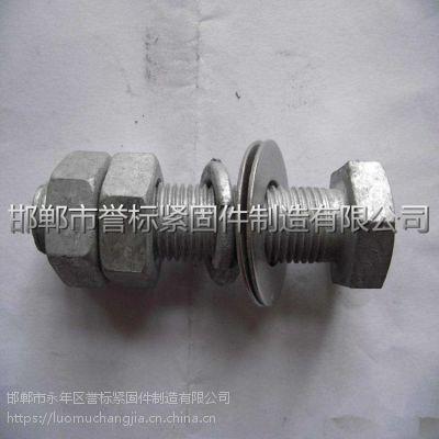 广州高强度热镀锌螺丝哪家有现货