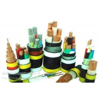 青岛电线电缆平度RVVP屏蔽软线九通供应商