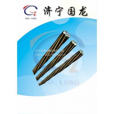 济宁国龙 电力镀锌钢绞线 预应力钢绞线 钢线材