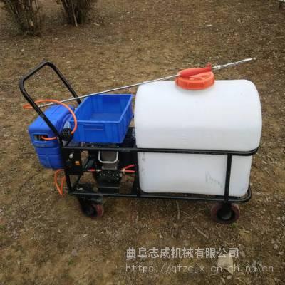 热销农用高压电动喷雾器手推式大棚洒水车养殖用充电式消杀打药机志成