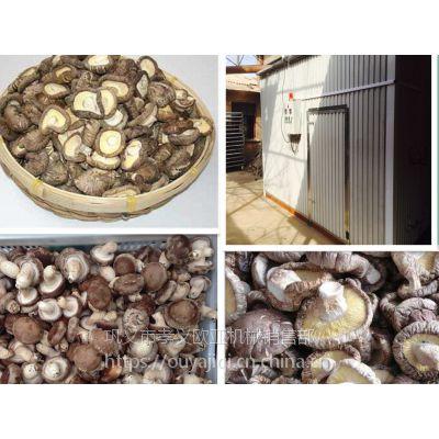 供应 JC-6型热风循环烘箱 欧亚干燥机械设备