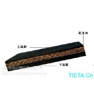山西耐磨EP输送带,耐酸碱聚酯输送带,输送带厂家