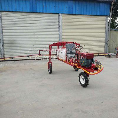三轮车载打药机 富兴自走式高杆喷药机 大型杀虫喷雾机厂家
