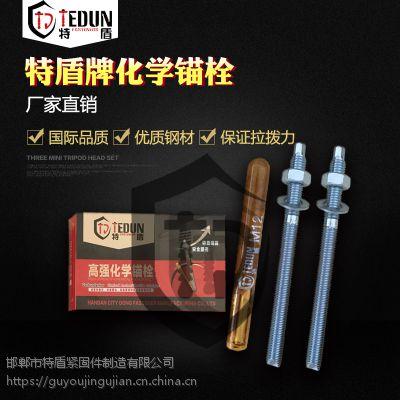 永年厂家供应高强度化学锚栓 高强建筑锚栓 特盾紧固件