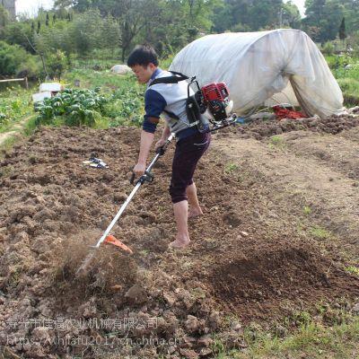 BG430背负式小型除草机多少钱一台斩草除根汽油旋耕锄草机