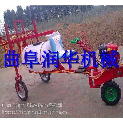 园林高压汽油喷雾器 手推式绿化盆景打药机 高扬程消毒车
