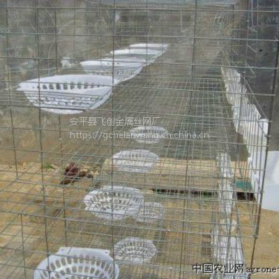 养兔子笼【鸽子笼】加粗鸽子笼子,飞创丝网全国批发