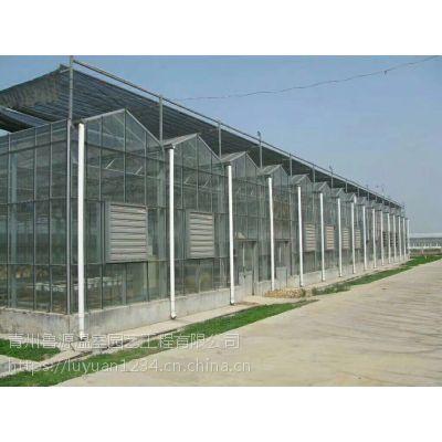 四川广元玻璃大棚高效遮阳系统纹络型抗紫外线大棚设备施工厂家