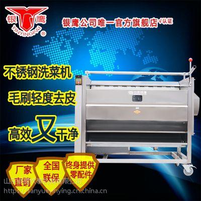 银鹰牌CX100I/150洗菜机