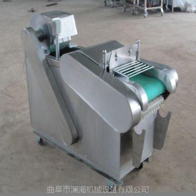 澜海 厂家热销蔬菜切菜机 商用家用大型切菜设备